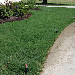 Paradise Landscapes Design & Build top services includes Irrigation designed for your property.